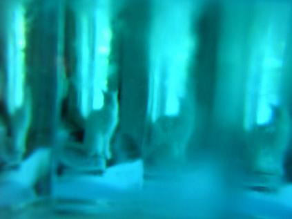 blue cleo