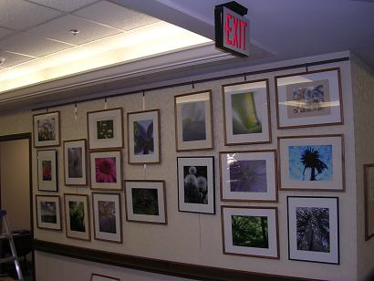 my photos being displayed at elyria united methodist village